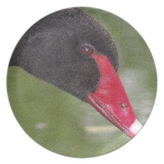 Primer hermoso del cisne negro platos para fiestas