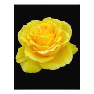 Primer hermoso del rosa amarillo aislado membretes personalizados