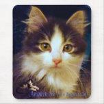 Primer lindo de Mousepad del gatito del gato de Tapete De Raton