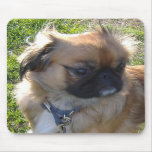 Primer lindo Mousepad del perro Alfombrillas De Ratones