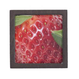 Primer lleno del marco de una fresa cajas de regalo de calidad