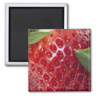 Primer lleno del marco de una fresa imán cuadrado
