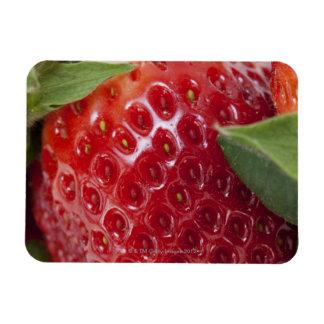 Primer lleno del marco de una fresa iman rectangular
