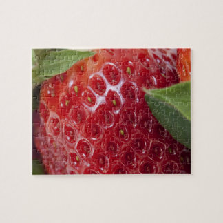 Primer lleno del marco de una fresa puzzle