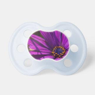 Primer magenta de la flor chupetes de bebe