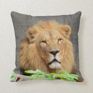 Primer masculino y perfil del león cojines