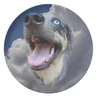 Primer mullido de las nubes del perro del leopardo plato de comida