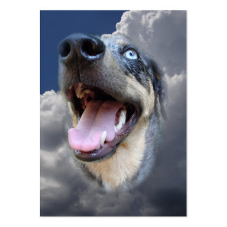 Primer mullido de las nubes del perro del leopardo tarjeta de visita