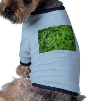 Primer pinado verde ancho de las hojas camiseta con mangas para perro