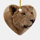 Primer principal de la leona ornaments para arbol de navidad