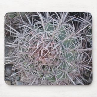 Primer rojo del cactus de barril alfombrillas de raton