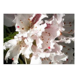 Primer rosado 2 del pétalo de la flor del rododend tarjeta de negocio