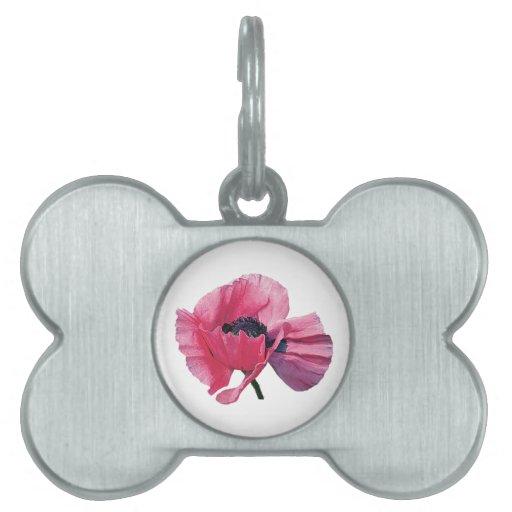 Primer rosado de la amapola placa mascota