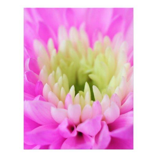 Primer rosado de la flor membrete