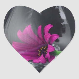 Primer rosado de la margarita en copa de vino pegatina en forma de corazón