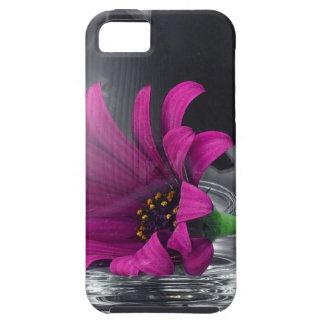 Primer rosado de la margarita en una copa de vino iPhone 5 Case-Mate cobertura