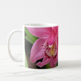 Primer rosado de la orquídea taza de café