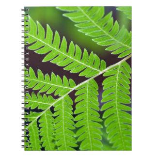 Primer verde de la hoja libros de apuntes con espiral