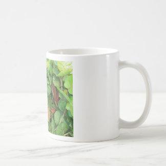 Primer verde y marrón de Seagrape Taza De Café