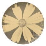 Primer viejo 3 de la flor del cosmos del amarillo  plato para fiesta