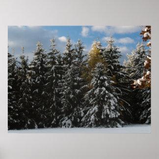 Primera nieve 2009 impresiones