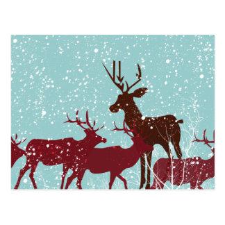 Primera nieve del arbolado tarjeta postal