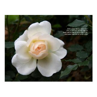 Primeras 4 líneas de soneto # 18 de Shakespeare Tarjetas Postales