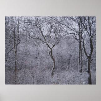 Primeras nevadas en Upstate Nueva York Póster