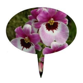 Primero de la torta - orquídea de pensamiento figuras de tarta