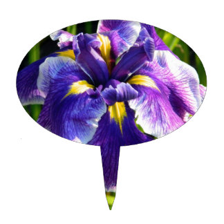 Primero púrpura de la torta del iris decoración para tarta
