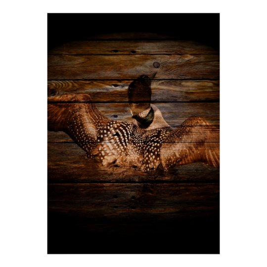 Primitive Barn wood Western Country waterfowl Loon Poster