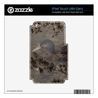 Primitive country outdoor lake pond wild duck iPod touch 4G decals