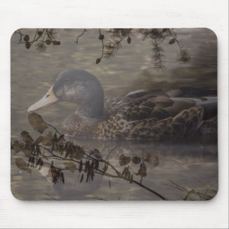 Primitive country outdoor lake pond wild duck mouse pad