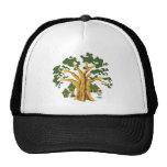 primitive hats