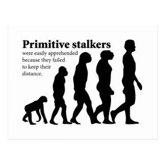 Primitive Stalkers Postcard