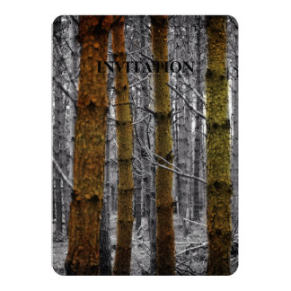 Primitive Western Country Camouflage Pine Trees Card