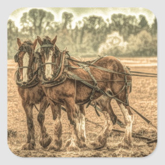 Primitive Western country farm horses Square Sticker