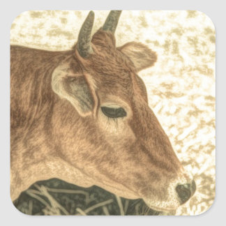 Primitive Western Country Ranch Brown Angus Cow Square Sticker