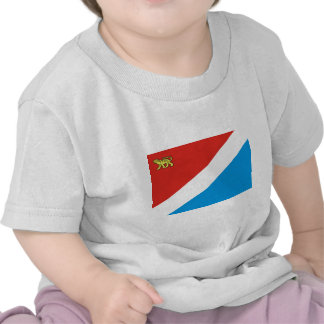 Primorsky Krai bandera de Rusia Camisetas