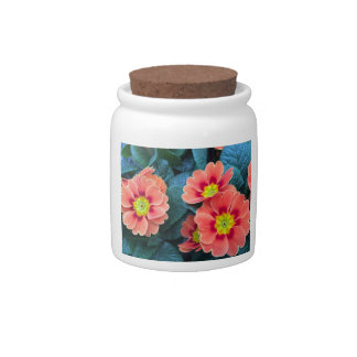 primrose candy dish