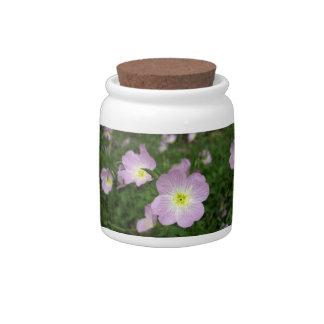 Primrose Candy Jars