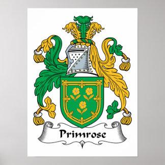 Primrose Family Crest Print