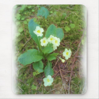 primrose Flower Mouse Pad