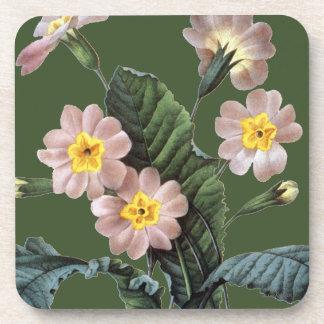 Primrose (Primula Aucalis) Drink Coaster