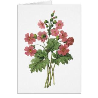 primrose(Primula sinensis) by Redouté Greeting Card