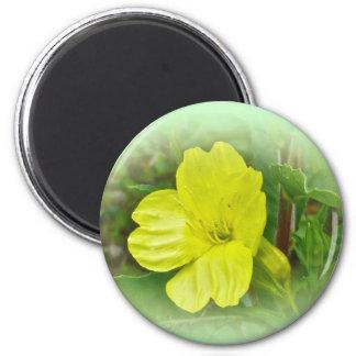 Primrose Yellow Wildflower Coordinating Items Magnet