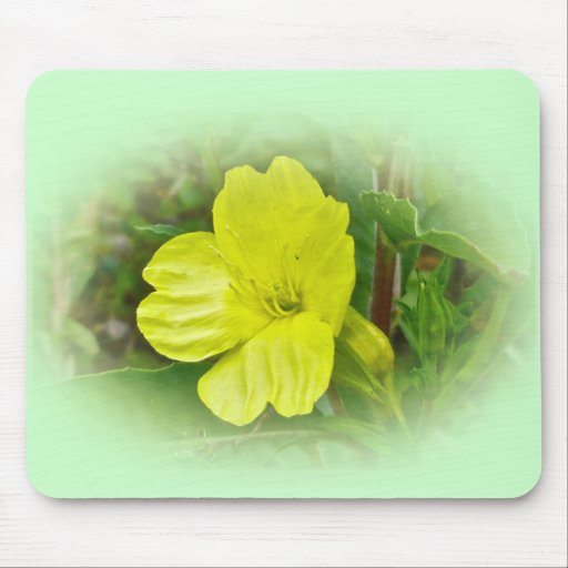 Primrose Yellow Wildflower Coordinating Items Mousepads