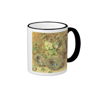 Primroses and Birds' Nests Mugs