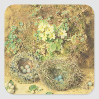 Primroses and Birds' Nests Stickers
