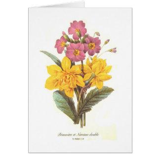 Primula and daffodils greeting card